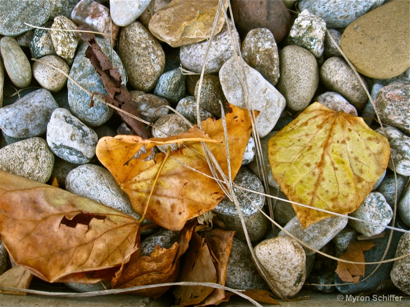 Full spectrum - ID: 14932350 © Myron Schiffer