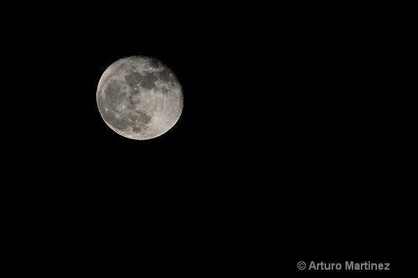 - ID: 14934221 © Arturo Martinez