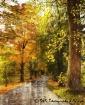 Fall in New Engla...
