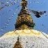 © Jeff Lovinger PhotoID# 14954739: Swayambhu Temple, Kathmandu, Nepal  #802