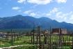 Montana Vista