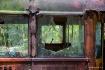 Junked School Bus