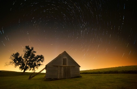 A Barn and a Tree