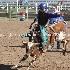© Diane Garcia PhotoID # 14992720: wyatt crandall jr high rodeo nephi 2015 4