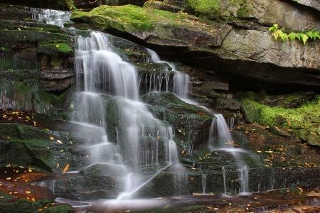 Shay Falls