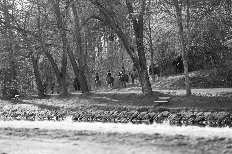 Riders in Fall - ID: 15015342 © Ilir Dugolli