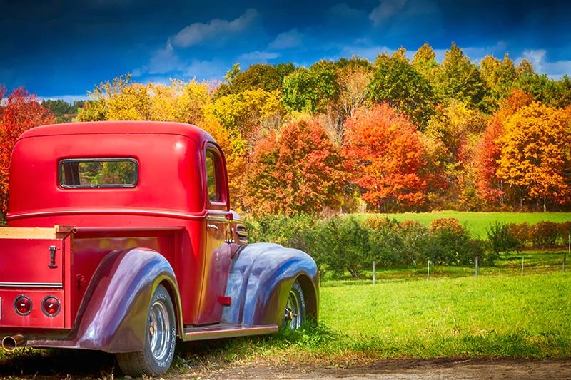 Autumn Drive-In - ID: 15021456 © Jeff Robinson