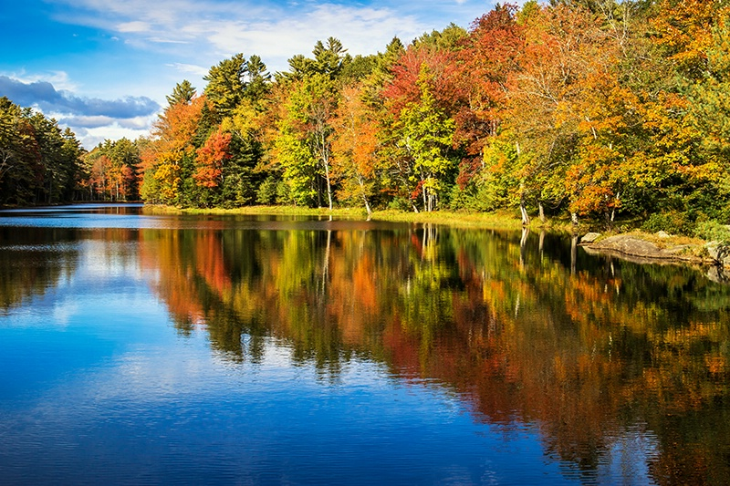 Whispering Autumn  - ID: 15030525 © Jeff Robinson