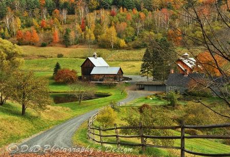 Sleepyu Hollow Farm, VT