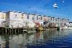 Fishing Pier, Por...