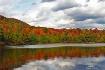 Fall color reflec...