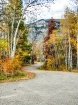 Autumn Glory Road