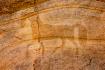 Faux Petroglyph