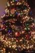 The Christmas tre...