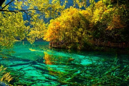 Glow at pond