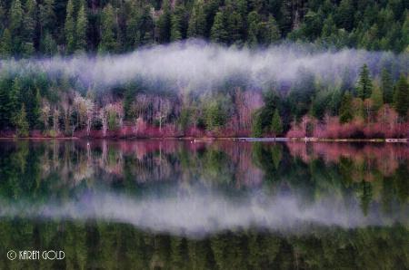 Reflection at Cameron Lake