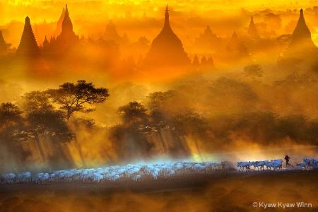 Golden Evening of Myanmar