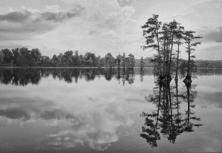 Cypress Lake