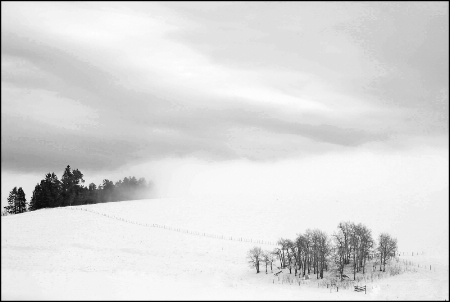 As Fog Rolls In