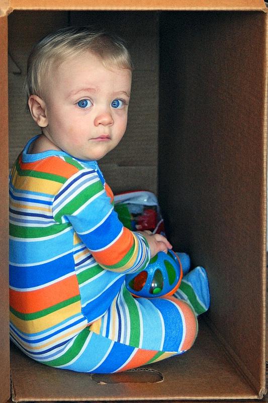 Box Boy I