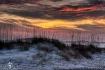 Sea Oats Sunset