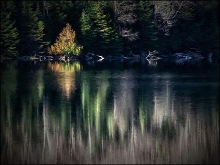 Reflections at Heart Lake