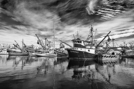 At Fisherman's Terminal