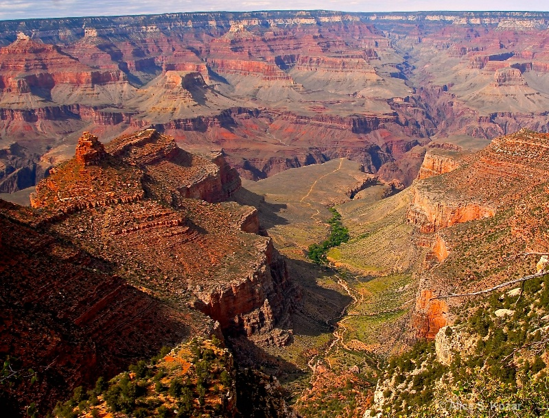 Awesome South Rim Grand Canyon - ID: 15087279 © Alice Kozar