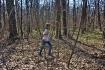 Forest walking