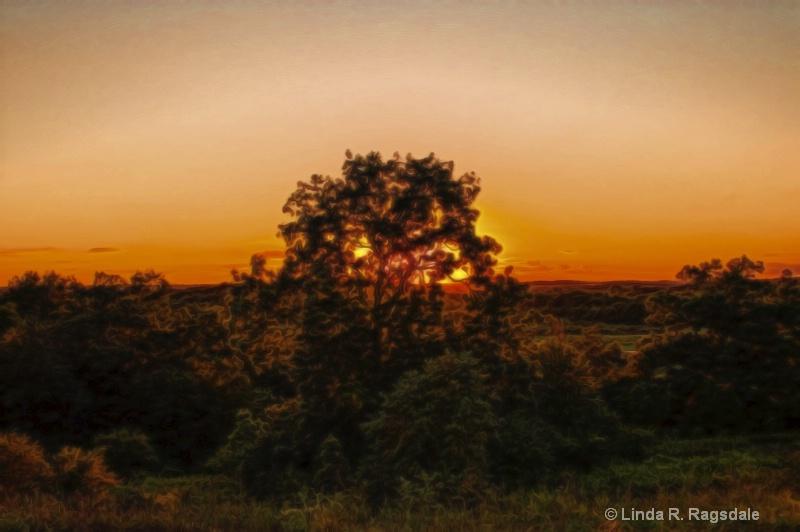 The Golden Hour - ID: 15098867 © Linda R. Ragsdale