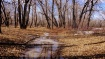 Fish Creek Spring...