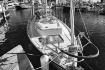Sailboat at Fishe...