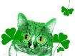 Have a Happy St. ...