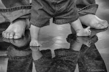 Photography Contest Grand Prize Winner - April 2016: Testing the Water