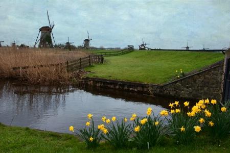 Windmills in Kinderdijk in the Netherlands