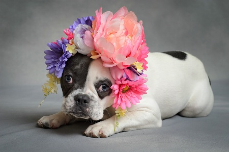 Do I Have To Wear This All Day, Mom!