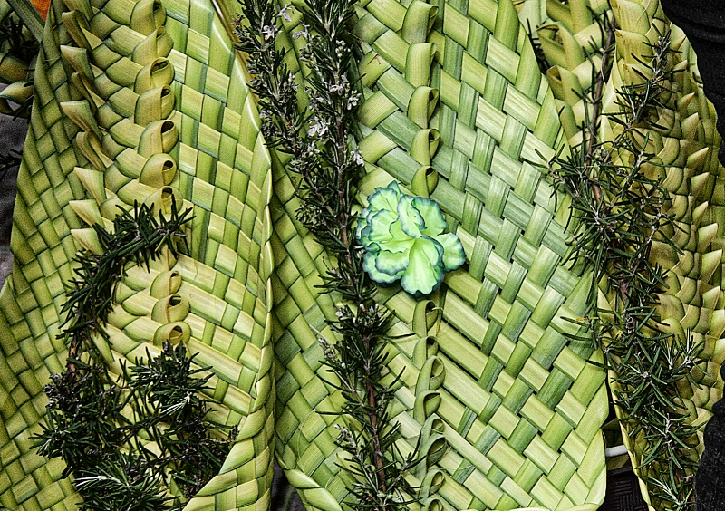 Palm Riffs for Sale - ID: 15131035 © David Resnikoff