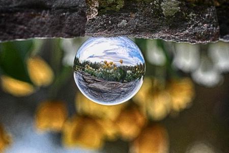 Crystal Ball Photography