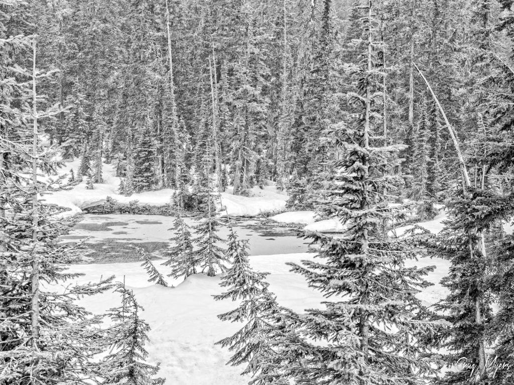Frozen Pond - ID: 15151975 © Craig W. Myers
