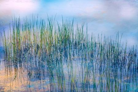 Whisper of the Reeds