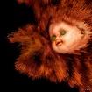 Dollhead Explosio...