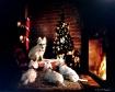 Christmas Tails