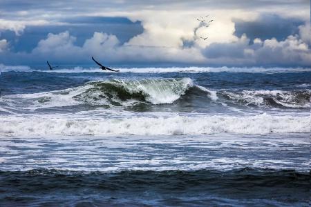 The Glory Of Morning On The Oregon Coast