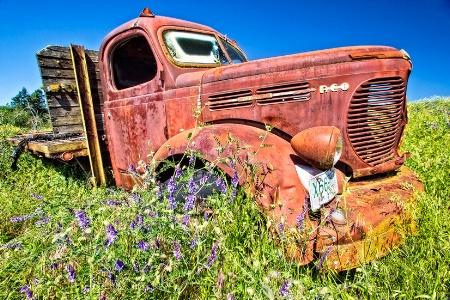 R.E.O. Speedwagon, The Palouse, Washington