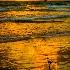2Enjoying the Sunrise - ID: 15176671 © Richard M. Waas