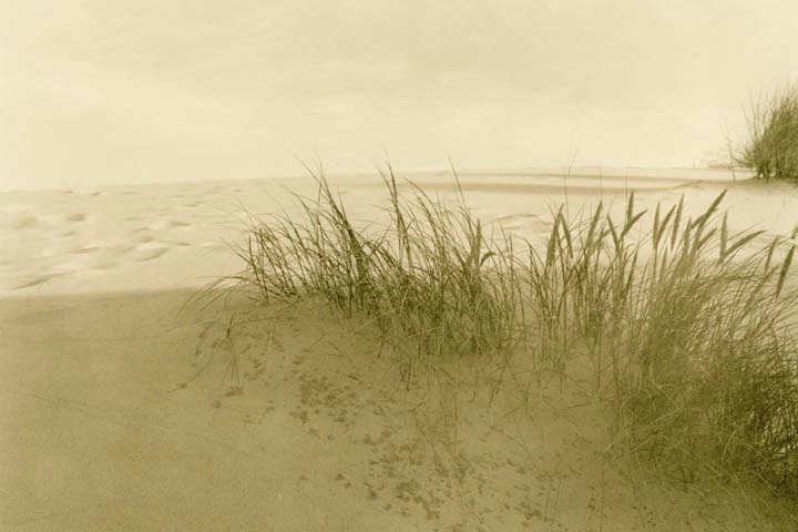 - ID: 15191928 © Joan E. Bowers