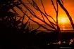 Sunrise-Silhouett...