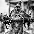 © Javier Sanchez-Monge Escardo PhotoID # 15220127: