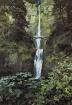 Multnomah Falls  ...