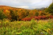 Adirondack Color